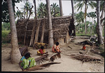 loan scheme support for coconut leaf roofing self help program with women
